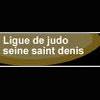 rscm_judo_montreuil_liens_L93